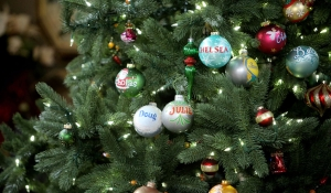 days christmas bulbs