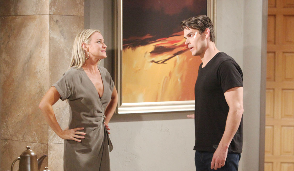 Adam proposes to Sharon on Young and the Restless