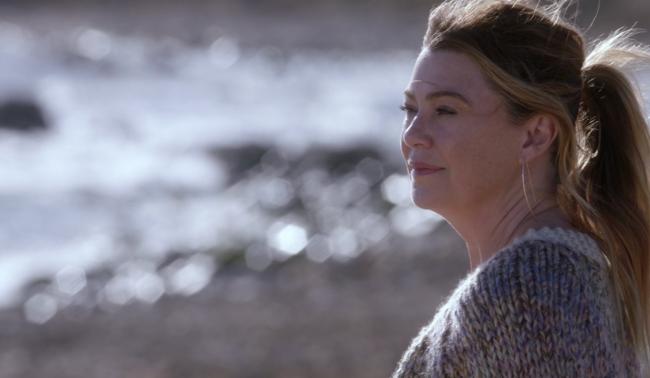 Grey's anatomy finale meredith screenshot